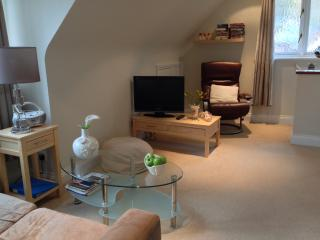 Romantic 1 bedroom Condo in Henley-on-Thames - Henley-on-Thames vacation rentals