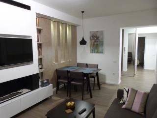 Right in the heart of Belgrade! - Belgrade vacation rentals