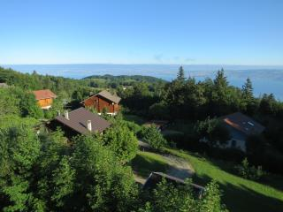 Nice Condo with Satellite Or Cable TV and Boat Available - Thollon-les-Memises vacation rentals