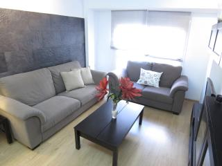 Beautiful apartment located in the city centerWIFI - Malaga vacation rentals