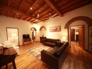 Galeota apartment in the heart of florence - Florence vacation rentals