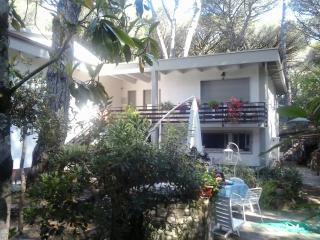 COSTA ETRUSCA    Delfino - Marina di Castagneto Carducci vacation rentals