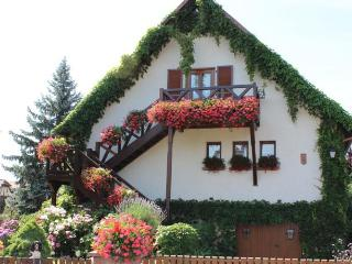 Apartment Route du vin Centre Alsace - Bas-Rhin vacation rentals