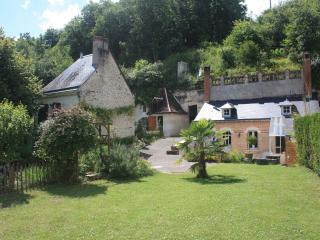 Typical loirevalley gite near Amboise - Nazelles Negron vacation rentals