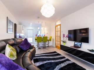 Cozy 2 bedroom Belfast Condo with Internet Access - Belfast vacation rentals
