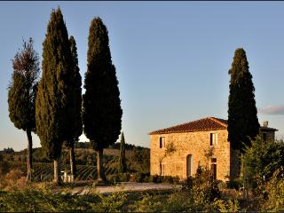 Merveillous villa with pool in Tuscany's hearth - Trequanda vacation rentals