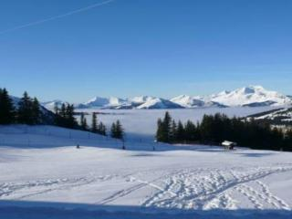 Falaise Apartment, Ski In Ski Out With Stunning - Avoriaz vacation rentals