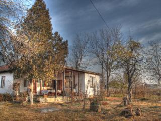 """Kick the Saddle"" Traditional Guest House - Chiciu vacation rentals"
