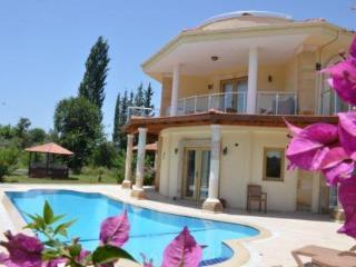 Villa Narenciye - Dalyan vacation rentals