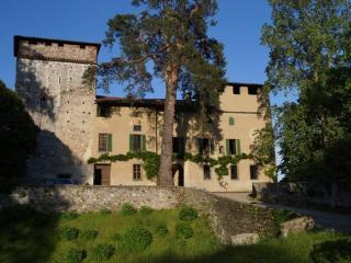 Castello Visconteo sul Lago maggiore EXPO Malpensa - Castelletto sopra Ticino vacation rentals