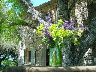 True Provencal Cottage in Luberon - Cabanon - Saignon vacation rentals