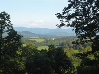 Gorgeous 3 bedroom Luray Cabin with Deck - Luray vacation rentals