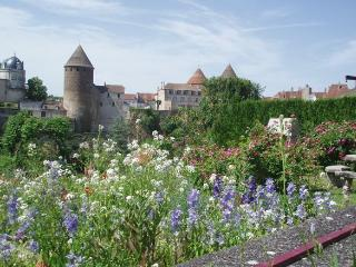 Charming house in amazing Burgundy - Semur-en-Auxois vacation rentals