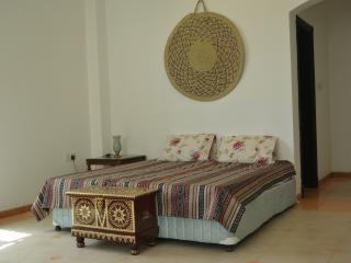 DELUXE DOUBLE BEDROOM with ENSUITE BATHROOM - Oman vacation rentals