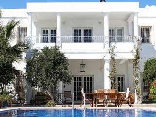 Exclusive Luxury Home - VILLA SATSUMA - Bodrum vacation rentals