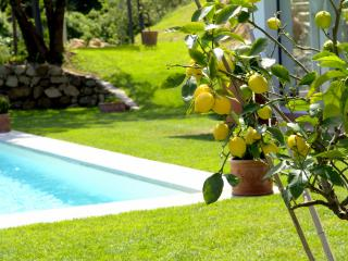 Perfect 3 bedroom House in Rignano sull'Arno - Rignano sull'Arno vacation rentals