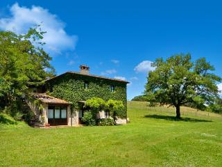 Villa D' Elsa - Radicondoli vacation rentals