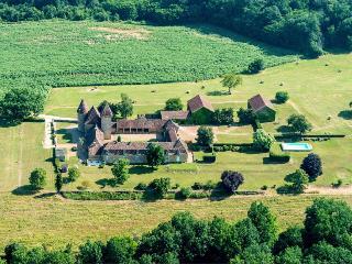Chateau De Theleme - Le Buisson-de-Cadoin vacation rentals