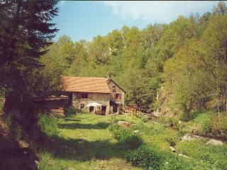 Watermill Moulin de Laval - Saint Priest des Champs vacation rentals
