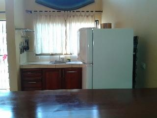 Large 1 bedroom 2 bath MountainView Condo near Coco and Ocotal Beaches - Playas del Coco vacation rentals