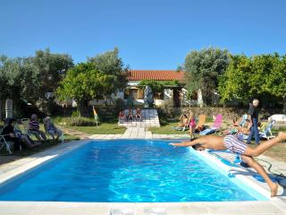 Nice 6 bedroom Bed and Breakfast in Portalegre with Central Heating - Portalegre vacation rentals
