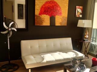 Nice , cozy and comfortable 2BD 1BTH apartment A3 - Santiago vacation rentals