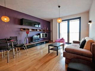 Perfect 2 bedroom Vacation Rental in Krakow - Krakow vacation rentals