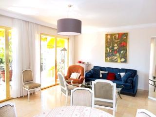 Best Cannes 3 bedroom with terrace apart, 6 sleeps - Le Cannet vacation rentals