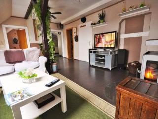 Vacation Home in Bad Harzburg - 969 sqft, spacious, modern, cushy (# 5469) - Bad Harzburg vacation rentals