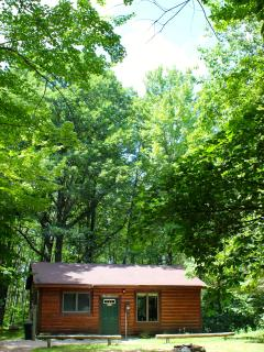 Cozy 2 bedroom Irons Cabin with Microwave - Irons vacation rentals