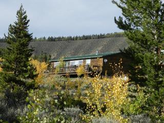Scenic Mountain Cabin,  Leadville - Leadville vacation rentals