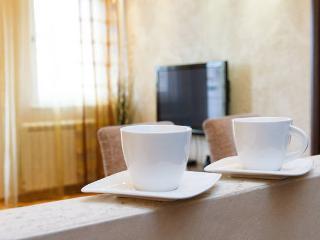 Erste apartment Arena New Two Bedroom Free Parking - Belgrade vacation rentals