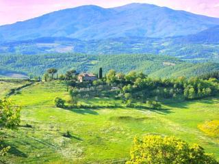 Apartments in B&B or entire villa -  Il Pozzeto - Anghiari vacation rentals