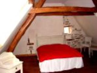chambre d'hôtes maison peyarnaud - l'authentique - Tarbes vacation rentals