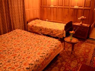 Charming 3 bedroom Vacation Rental in Srinagar - Srinagar vacation rentals