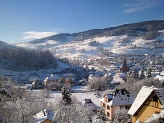 Bright 5 bedroom Lapoutroie Chalet with Internet Access - Lapoutroie vacation rentals