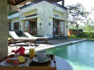 Villa Kawan Rural Beach Area Bali, place to relax. - Tabanan vacation rentals