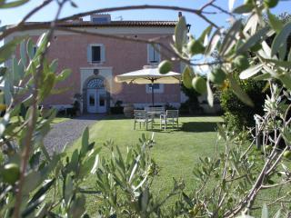 Agriturismo Casale Bonaparte - Cellere vacation rentals
