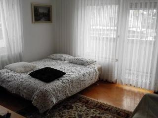 Apartment Armic - Slovenia vacation rentals