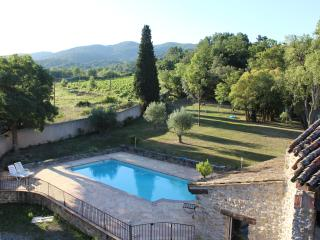 holiday home in nature with pool and spa - Ladern-sur-Lauquet vacation rentals