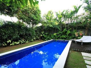 Promo100$ 2 bedroom villa with Breakfast - Denpasar vacation rentals