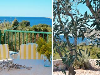 36130 H(4+2) - Drvenik Mali (Island Drvenik Mali) - Drvenik Mali vacation rentals