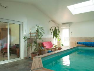 La Petite Maison sous les Pins- Pet-Friendly 2 Bedroom House with a Pool - Aix-en-Provence vacation rentals