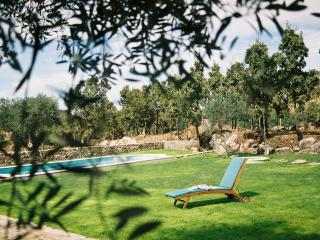 Charming holiday cottage with swimming pool - Marvao vacation rentals