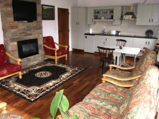 2 bedroom Cottage with Short Breaks Allowed in Loughrea - Loughrea vacation rentals