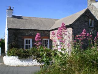 Yewdale Cottage, St. Davids, Pembrokeshire, Wales - Saint Davids vacation rentals