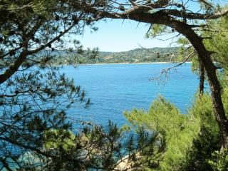 Nice Condo with Internet Access and A/C - Cavalaire-Sur-Mer vacation rentals