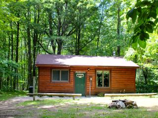 2 bedroom Cabin with A/C in Irons - Irons vacation rentals