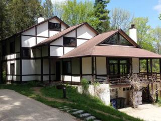 Race Mountain House - Sheffield vacation rentals