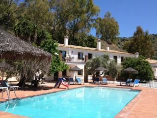 El Olivo - Malaga vacation rentals